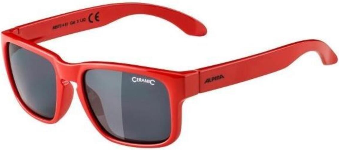 Alpina - Mitzo   cycling glasses